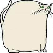 Große Katze