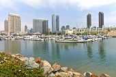 San Diego Marina Downtown Buildings.