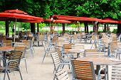 Cafe Terrace In Tuileries Garden, Paris