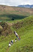 stock photo of zulu  - Approximately fifteen hikers trek along a path through the Drakensburg Mountain Valley in Kwa - JPG