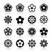 Flower head vector icons set
