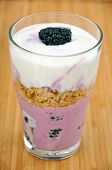 foto of top-less  - Greek Yoghurt with organic blackberries  and granola - JPG