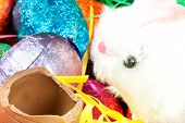Easter Bunny Eats Egg
