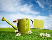 Watering can with daisies against a summer sky