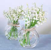 Beautiful lilies of the valley in glass vases on light background