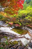 picture of seoraksan  - Fall waterfall spring at Seoraksan National Park - JPG