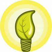 Leaf bulb