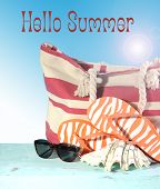 Summer Vacation Holiday Gear With Red And White Strip Beach Bag, Flip Flop Things, Shell And Sunglas