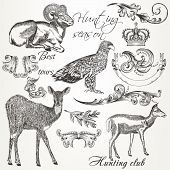 Collection Of Vector Hand Drawn Animals And Flourishes In Vintage Style