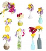 Collage of beautiful freesias in vase isolated on white