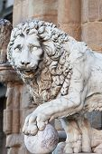 Florence sculpture of a lion