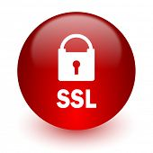ssl red computer icon on white background