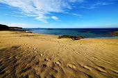 Footstep In Lanzarote    Summer