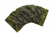 Sheet of dried nori ,dried seaweed