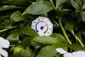 Retro Thermometer