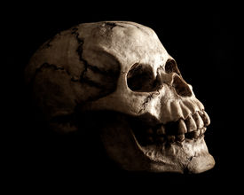 image of morbid  - An aged and weathered looking human skull prop extruding from shadow on a black background - JPG