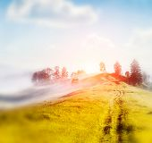 Foggy summer morning in the mountains. Carpathian, Ukraine, Europe. Beauty world. Retro style filter. Instagram toning effect. Tilt Shift blur effect.