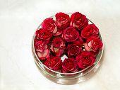 Red Rosebuds In Glass Vase