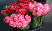Street Flower Market. Different Roses