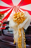 Wedding Car Decorated With Ribbon