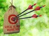 Local Search Marketing - Arrows Hit in Red Target.