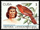 Vintage  Postage Stamp. Tehuelche Indian.