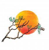 Branch of  oak tree against the sun, vector illustration