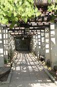 Santocampo Grape Arbor