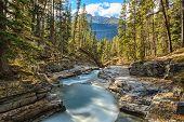 Beauty Creek