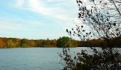 Fall foliage tree lined shore along a tranquil pond