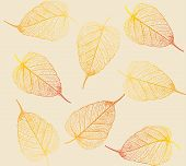 Fresh Colorful Leaves Background. Vector