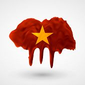 Flag of Vietnam painted colors