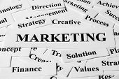 Marketing And Other Related Words