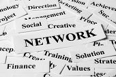 Network And Other Related Words