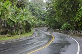 Wet asphalt road in the tropics