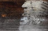 stock photo of animal eyes  - Old wood plank with cracks - JPG