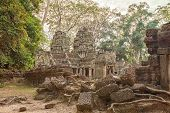 foto of raider  - Ta Prohm famouse giant tree with ancient roots - JPG