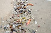 picture of polluted  - Garbage on a beach environmental pollution concept picture - JPG
