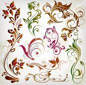 elementos de design floral