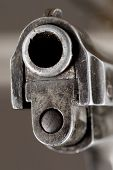 Spectator-aimed gun