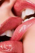 Beautiful female lovers kissing closeup