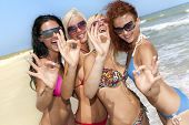 picture of beach party  - Joyful team of friends having fun at the beach and showing okay sign - JPG