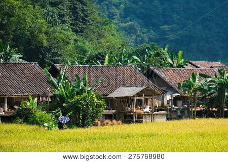 Vietnam Traditional House In Northern