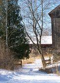 Rural Walkway