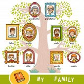 Vector Cartoon Family Tree With Images Of People In Frames. A Visual Dictionary Of Family Members. poster