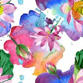 Purple Lotus. Floral Botanical Flower. Watercolor Background Illustration Set. Seamless Background P poster