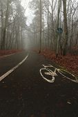 Foggy Day In The Park, Wet Bicycle Path With Old White Painted Sign. Couple Of Walkers Visible In Th poster
