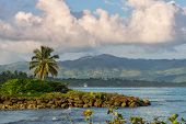 Caribbean Tropical Landscape. Samana Region, Dominican Republic. Beautiful Tropical Landscape With D poster