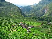 Batad Village And Rice Terraces