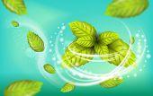 Realistic Illustration Flying Mint Leaf Vector. 3d Image Set Fresh Mint Foliage. Refreshing Effect W poster
